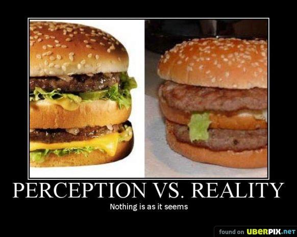 essay real reality representation truth tv