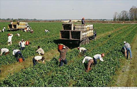 Undocumented migrants in canada a scope literature review