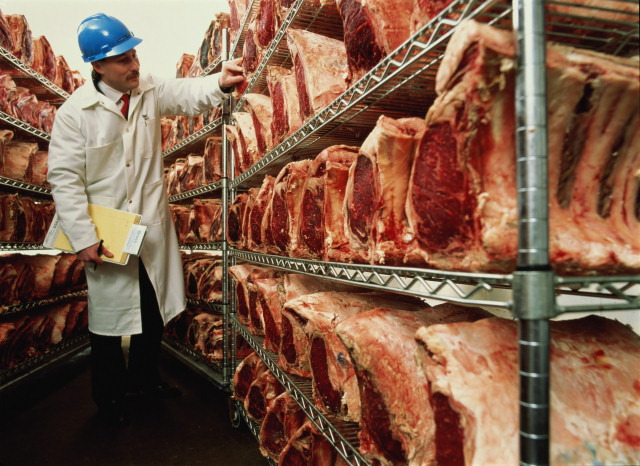 meat industry workers essay For meatpacking and poultry companies, undocumented workers have filled a   yet even though these undocumented workers are key to the meat-producing  industry,  a comparison to the pharmaceutical industry in this essay provides an .